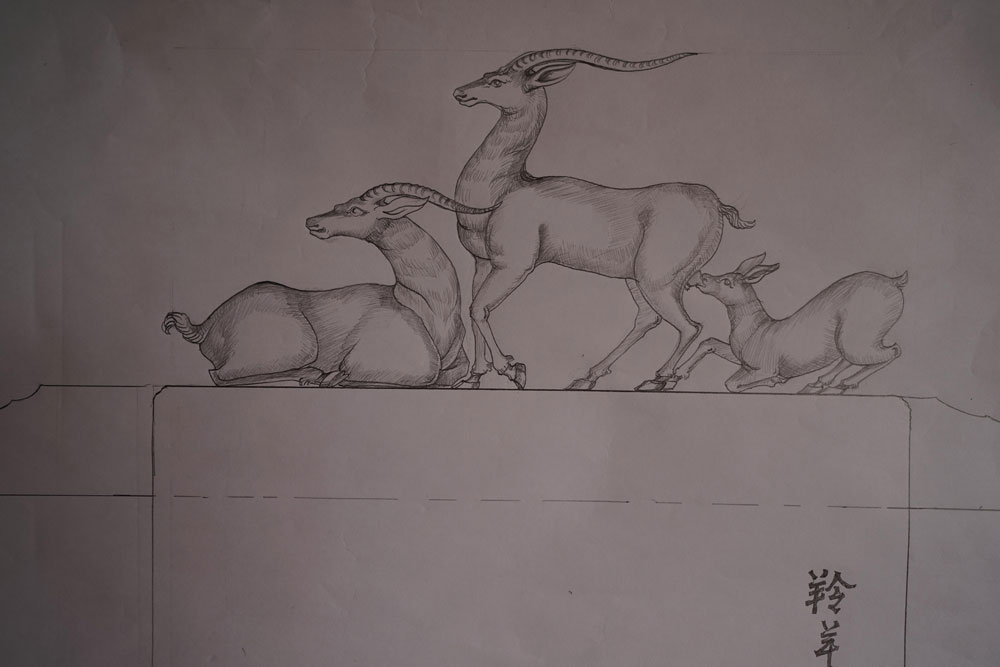 羚羊素描头像步骤